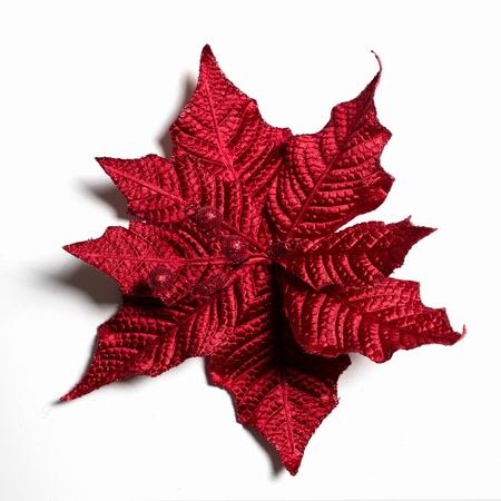 60 stuks per omdoos Kerstbloem Pontsettia Glitter -  Rood  Per omdoos
