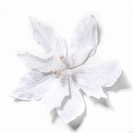 Artificial christmas Pontsettia White