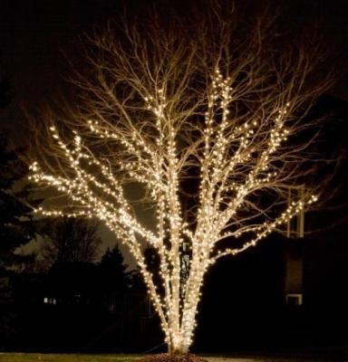 Lichterkette 100 LED Warm Weiss.10 meter pro set