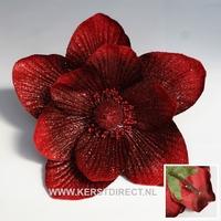 48 stuks per omdoos -  Kerstbloem Magnolia Glitter -  Rood