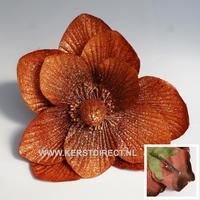 48 stuks  per omdoos Kerstbloem Magnolia Glitter -  Copper Per omdoos