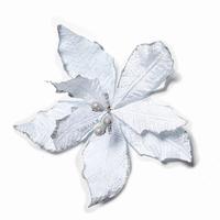 60 stuks per omdoos Kerstbloem Pontsettia Glitter -  Silver